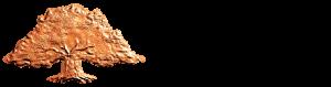 Sparbanksstiftelsen_Logo_pos